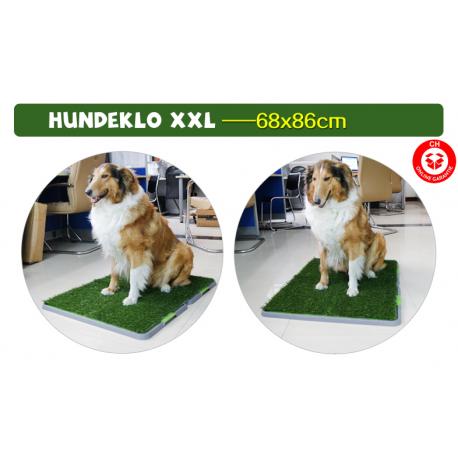 Hund Hunde Klo WC XXL Grösse Hundeklo Welpe Welpen Welpentoilette Stubenrein Haustiere Hundetoilette WC Toilette 3 Schichten