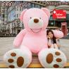 Riesen Teddy Teddybär Plüsch Bär Plüschbär Pink Rosa 260cm Plüschtier Kuschelbär XXL XXXL Geschenk Frau Mädchen Freundin