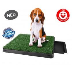 Deluxe Hunde Klo WC Toilette Hundeklo Hundewc Welpen Klo Welpentoilette Trainingsgerät USA HIT