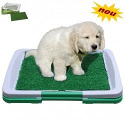 Welpen Hunde Hundeklo Welpen Hunde WC Toilette Puppy Potty NEU Gras Matte