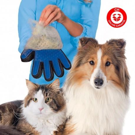 Katzen Katze Hunde Hund Tierhaar Handschuh Tierhaarentferner Entfernt lose Haare, massiert Ihr Tier