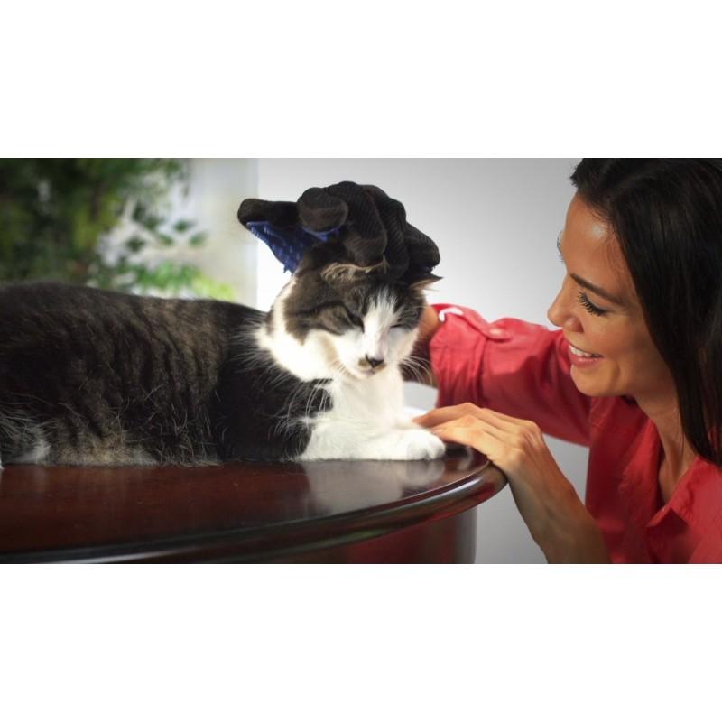 chats chiens gant enlever les poils. Black Bedroom Furniture Sets. Home Design Ideas