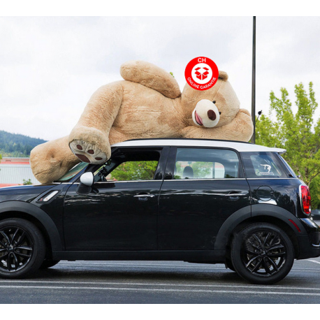 Riesen Mega XXL Plüschbär Plüschteddy Plüsch Bär Plüsch Teddy Ted 260cm Geschenk Riesengross Kuschel Bär